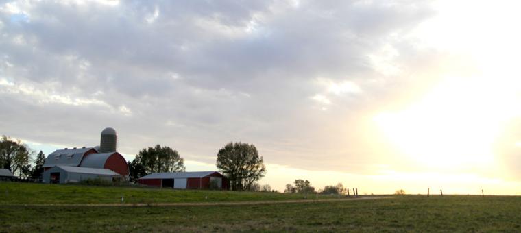 krusen-farm